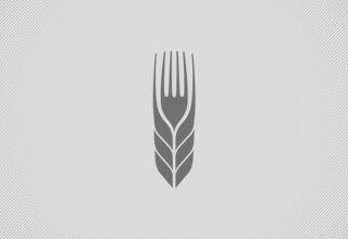 Farm to Fork Logo Design